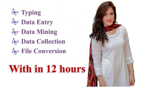 Data Entry 4 Hours Data Entry within 12 hours