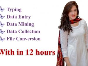 4 Hours Data Entry within 12 hours